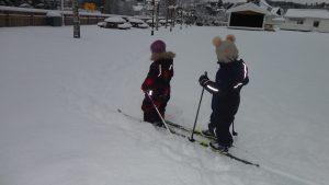 Fint skiføre